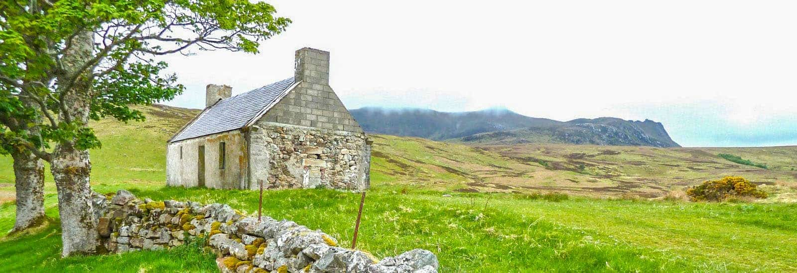 cottage in the green fields of ierland