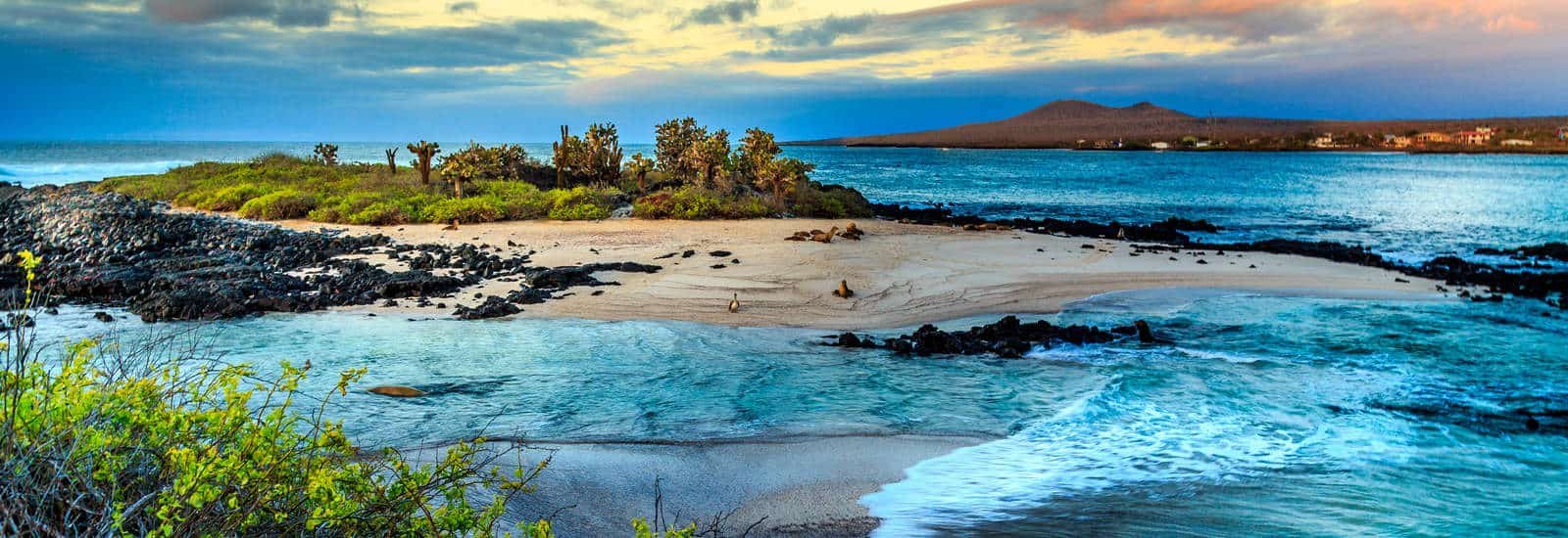 Ultimate Galapagos Travel Guide