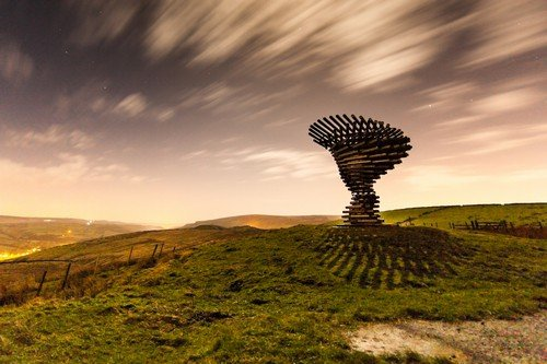 Moonlit Shadow at the Singing Ringing Tree