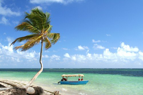 Palm tree and boat on tropical beach.