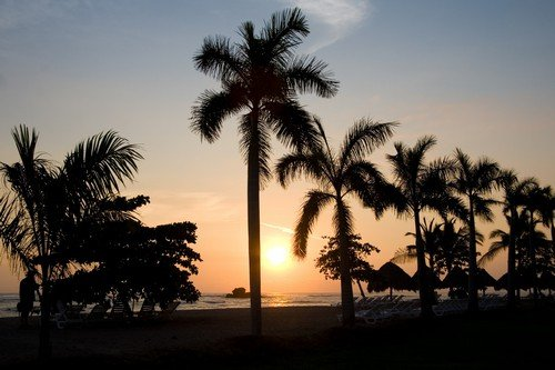 Palm trees and sunset - El Salvador travel guide