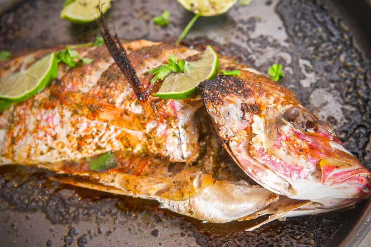 Bahamian Style Whole Broiled Red Snapper - Bahamian Cuisine