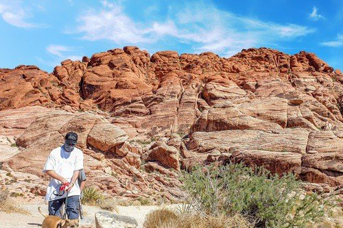 Red Rock Canyon Man and Dog