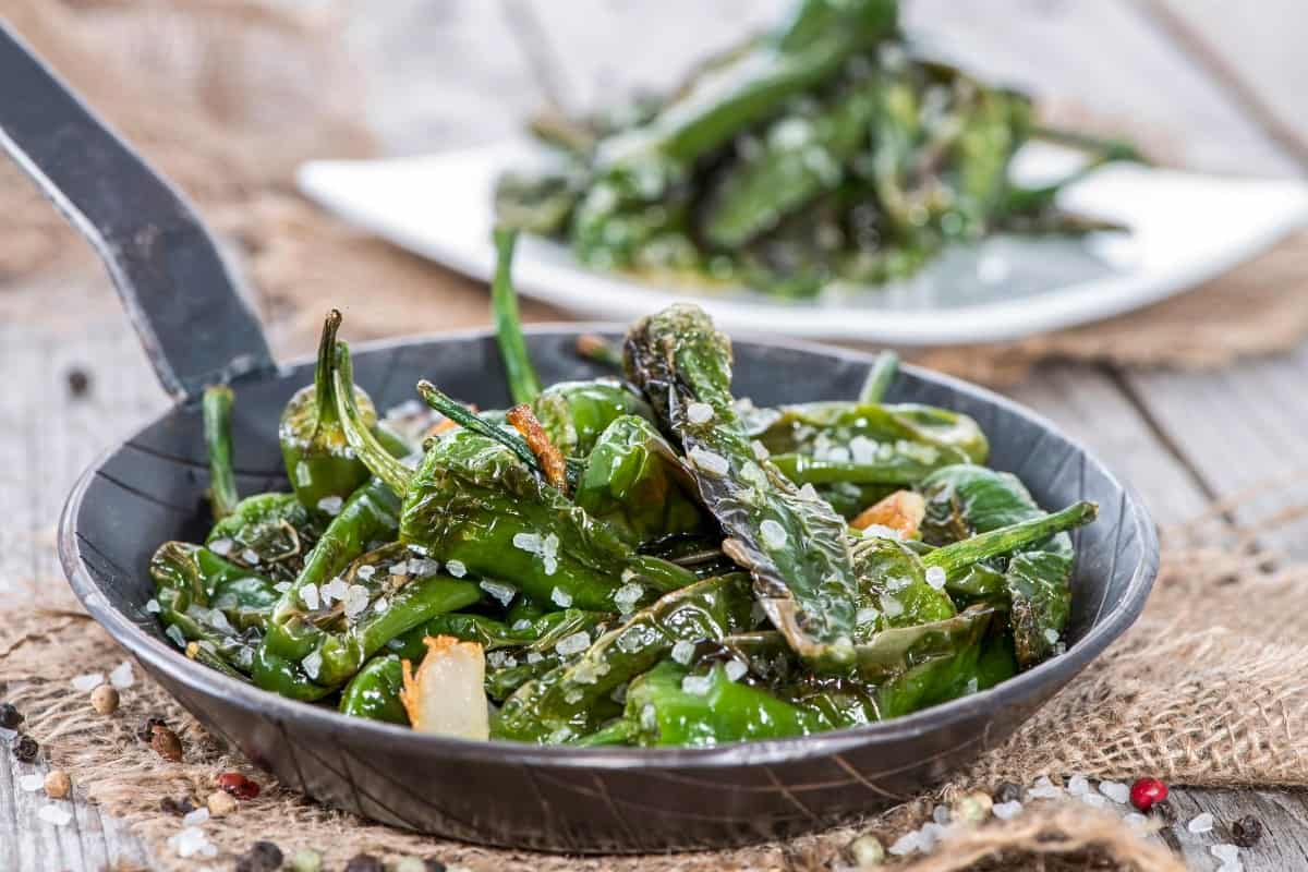 Sauteed Pimientos de Padron (Russian Roulette Peppers) - Spanish Dishes