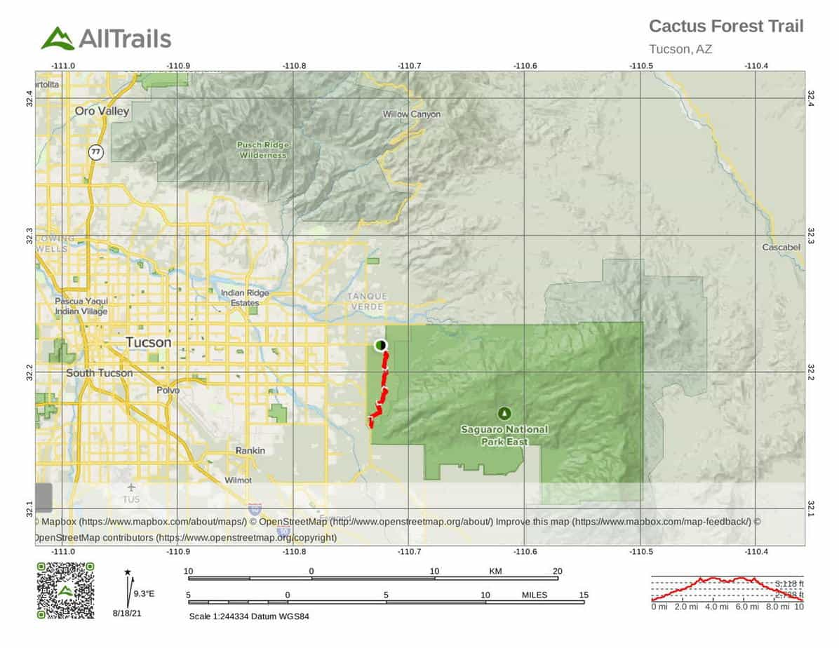 11 Cactus Forest Trail-1