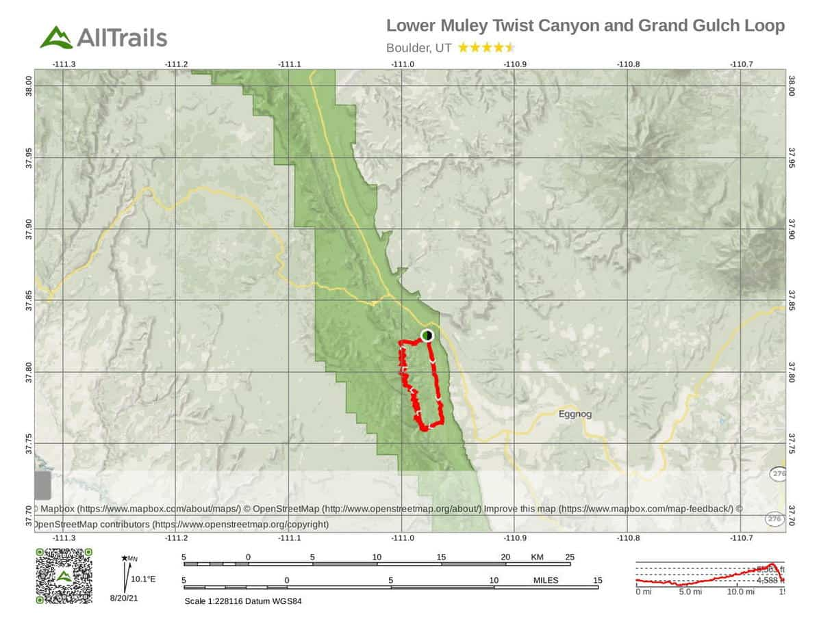 2 Lower Muley Twist Canyon and Grand Gulch Loop-1 National Monument