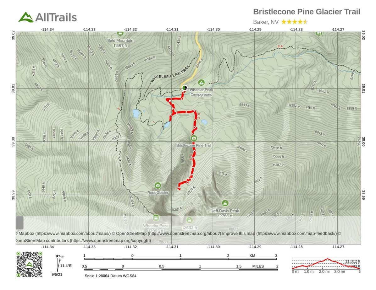 5. Bristlecone Pine Glacier Trail