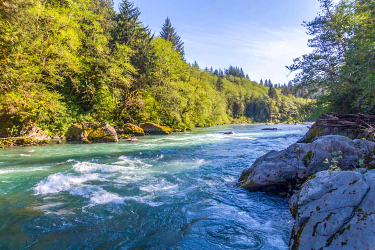 8 Hoh River Trust Olympic National Park