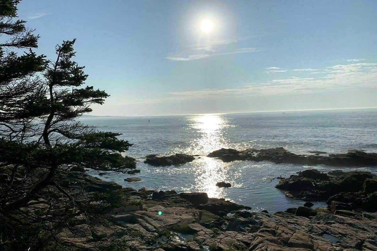 9. Otter Point hiking