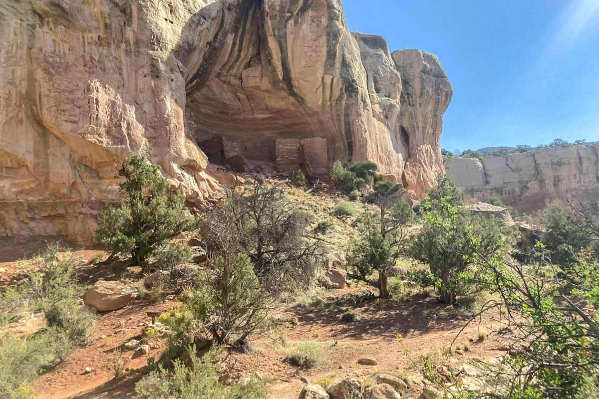 5. Sand Canyon Trail - Canyon of the Ancients National Monument Free Camping