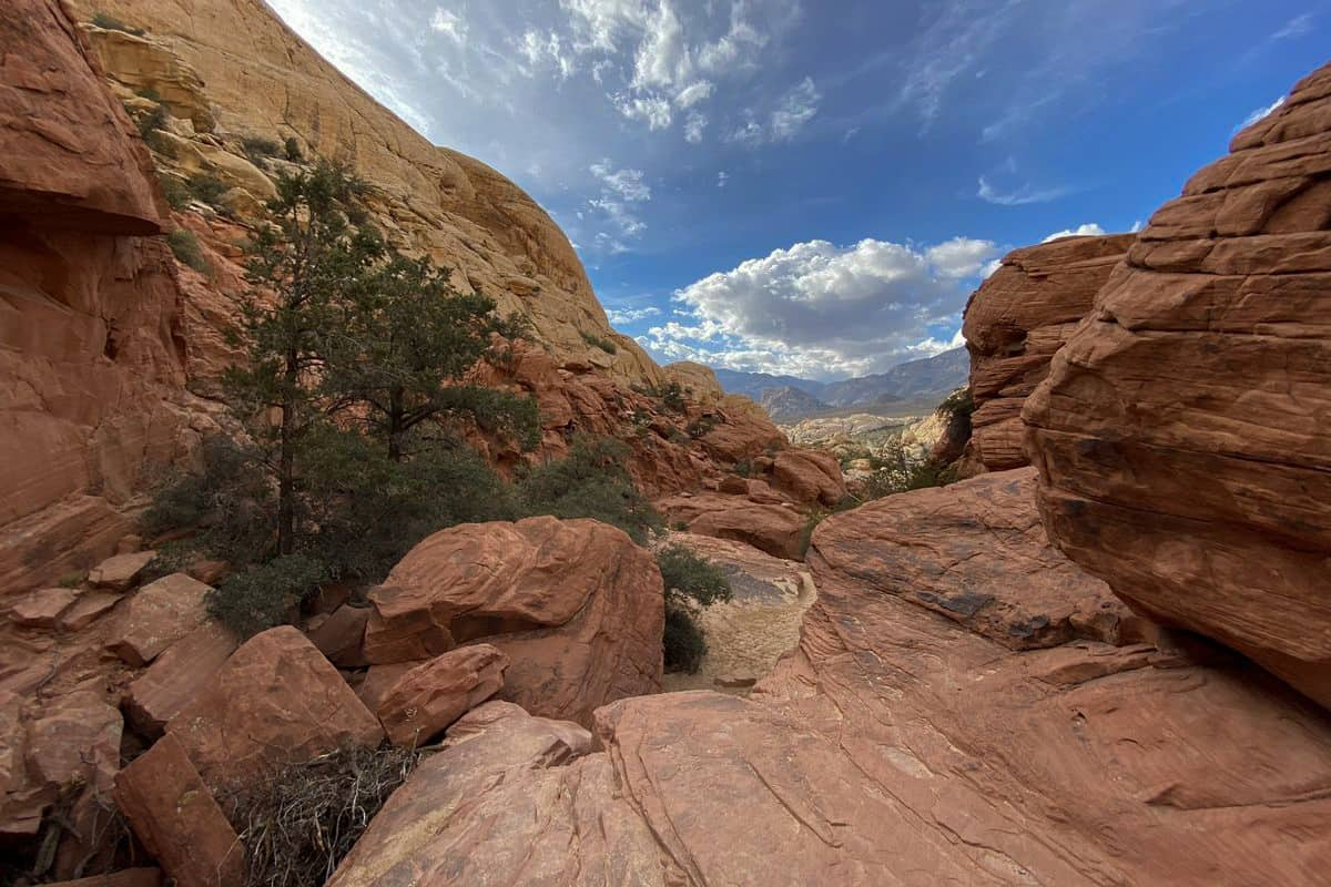 8. Red Rock Canyon Trails at Calico Tanks Trail-1 (2)