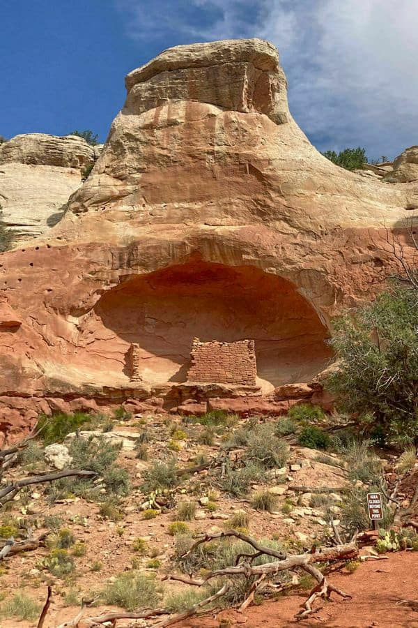 Canyon Of the Ancients National Monument (6)